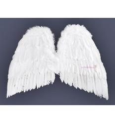 Skrzydła Anioła 55 X 48